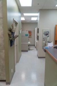 CU Smile Dental Care | Hallway